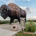 Worlds Largest Buffalo In North Dakota  by John McGraw