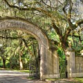 Wormsloe Gate by Linda Covino