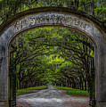 Wormsloe Plantation Entrance by Clicking With Nature