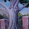 Wortham Oak by Paul Choate