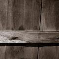 Woven Wood by Chris Bordeleau