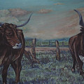 Wright Longhorns by Diann Baggett