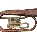 Wrinkled Old Trumpet by Michal Boubin