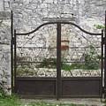 Wrought Iron Gate by Barbara Ebeling
