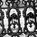 Wrought Iron Gate -west Epping Nh Usa by Erin Paul Donovan