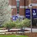 Wsu Library In Spring by Kari Yearous
