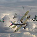 Ww1 - 'wings' by Pat Speirs