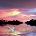 Sunset Swans by Jessica Jenney
