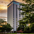 Wyly Tower, Louisiana Tech University by Chris Coffee