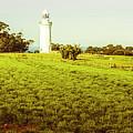 Wynyard Lighthouse Way by Jorgo Photography - Wall Art Gallery