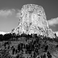 Wyoming Devils Tower National Monument With Climbers Bw by Thomas Woolworth