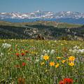Wyoming's Winds by Gina Herbert