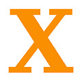 X In Tangerine Typewriter Style by Custom Home Fashions