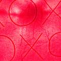 Xoxo 1 by Michael  Goodin