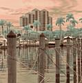 Yacht Basin by Peggy Starks
