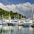 Yacht Lot by Bob Hislop