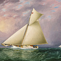 Yacht Race In New York Harbor by James Edward Buttersworth
