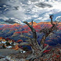 Yaki Point Grand Canyon by Anthony Dezenzio