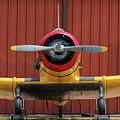 Yale And Hangar - 2018 Christopher Buff, Www.aviationbuff.com by Chris Buff
