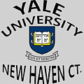 Yale University New Haven Connecticut  by Movie Poster Prints