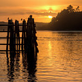 Yaquina Bay Sunset - Vertical by Kristina Rinell