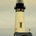 Yaquina Head Lighthouse - Newport Or by Christine Till