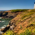 Yaquina Head Lighthouse by Walt Sterneman