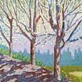 Yay-springtime by Barbara Ryan