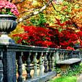 Ye Olde Garden Bench by Kristin Elmquist