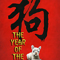 Year Of The Dog ... 2018 by Will Bullas
