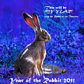 Year Of The Rabbit 2011 . Square Blue by Wingsdomain Art and Photography