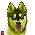 Yellow Alaskan Klee Kai - 6029 -wb by James Ahn