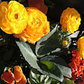 Yellow And Orange Marigolds by Cindy Freeman