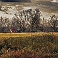 Yellow Barn And The Field by Michael Thomas