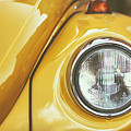 Yellow Beetle by Marcus Lindstrom