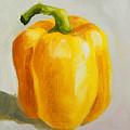 Yellow Bell Pepper by Joni Dipirro
