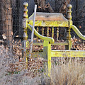 Yellow Bench by David Arment