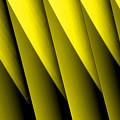 Yellow Borders by Susanne Van Hulst