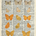 Yellow butterflies over dictionary book page by Anna W