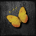Yellow Butterfly by Maria Astedt