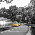 Yellow Cabs In Central Park, New York 3 by Art Calapatia