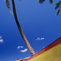 Yellow Canoe On Beach by Joss - Printscapes