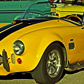 Yellow Cobra by Gwyn Newcombe