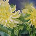 Yellow Dahlia Duet by Sharon Freeman