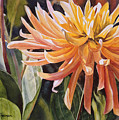 Yellow Dahlia by Sharon Freeman