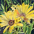 Yellow Daisy by LeAnne Sowa