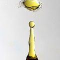 Yellow Droplet by Shannon Louder