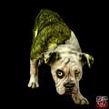 Yellow English Bulldog Dog Art - 1368 - Bb by James Ahn