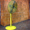 Yellow Fan by David Stone