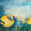 Yellow Fish Yellow Fish by Christine Mulder